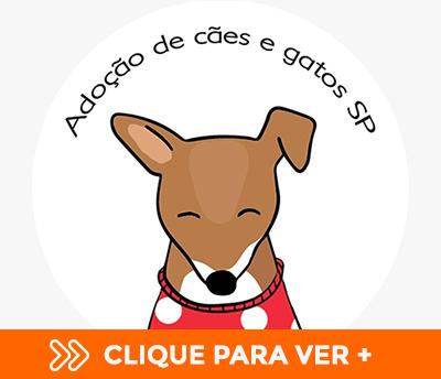 Visite Adoção Cães e Gatos SP